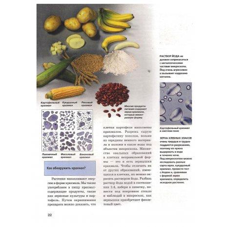 Микроскоп. Детская энциклопедия Levenhuk