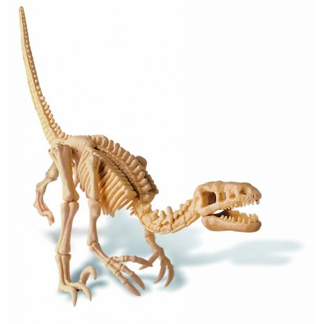 Набор 4M 00-13234 Скелет Велоцираптора РП*