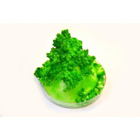 Набор для опытов GOOD FUN GF003G Живые кристаллы. Зеленый